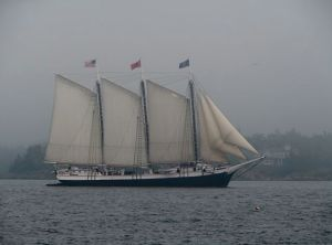 Taken from aboard Morning in Maine, in Rockland Harbor
