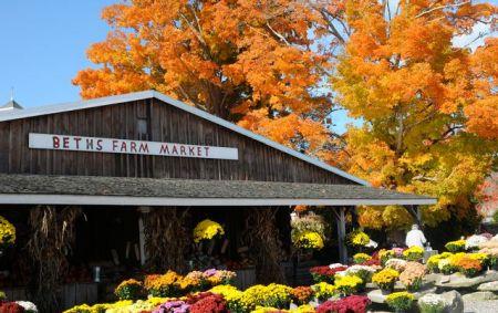 Beth's Farm Market, Warren, Maine